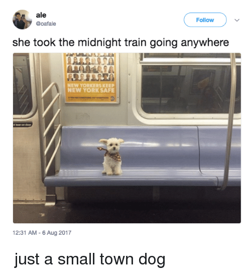 Lean, Memes, and New York: ale  @oafale  Follow  she took the midnight train going anywhere  NEW YORKERS KEEP  NEW YORK SAFE  t lean on door  12:31 AM -6 Aug 2017 ♫ just a small town dog ♫