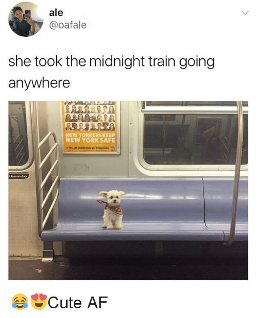 Af, Lean, and Memes: ale  @oafale  she took the midnight train going  anywhere  NEW YORKERS KEEP  NEW YORK SAFE  lean on door 😂😍Cute AF