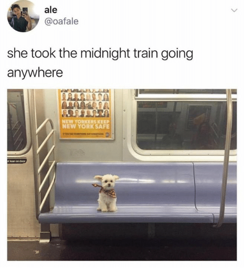 New York, Train, and Midnight: ale  @oafale  she took the midnight train going  anywhere  NEW YORKERS KEE  NEW YORK SAFE  5