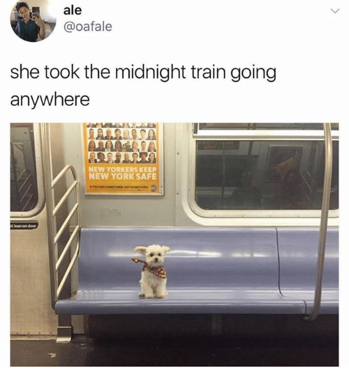 Dank, New York, and Train: ale  @oafale  she took the midnight train going  anywhere  NEW YORKERS KEEP  NEW YORK SAFE  ean on door
