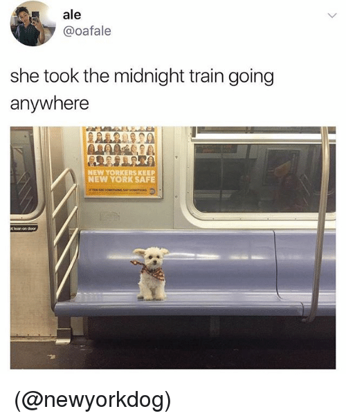 Lean, New York, and Train: ale  @oafale  she took the midnight train going  anywhere  NEW YORKERS KEEP  NEW YORK SAFE  t lean on door (@newyorkdog)