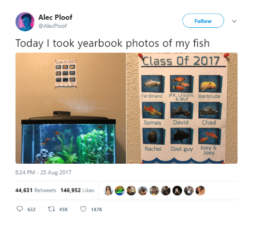 Cool, Fish, and Today: Alec Ploof  @AlecPloof  Follow  Today I took yearbook photos of my fish  Class Of 2017  Ferdinand JFK Lmcoln, Bertrude  Tomas David  Chad  Rachel Cool guy Joey &  Joey  8:24 PM-25 Aug 2017  44,631 Retweets 146,952 Likes  O 632 t1 45K 147K