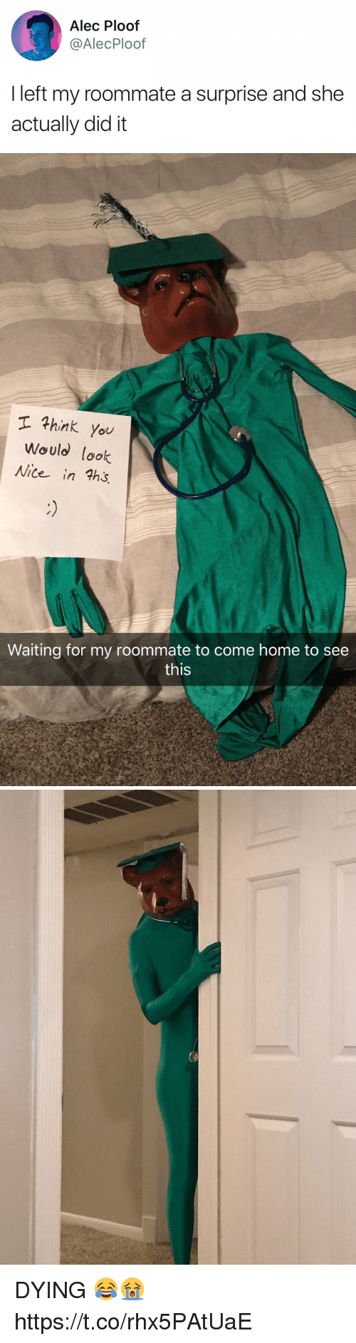 Roommate, Home, and Girl Memes: Alec Ploof  @AlecPloof  I left my roommate a surprise and she  actually did it   hink you  Would lok  Nite in ths  Waiting for my roommate to come home to see  this DYING 😂😭 https://t.co/rhx5PAtUaE
