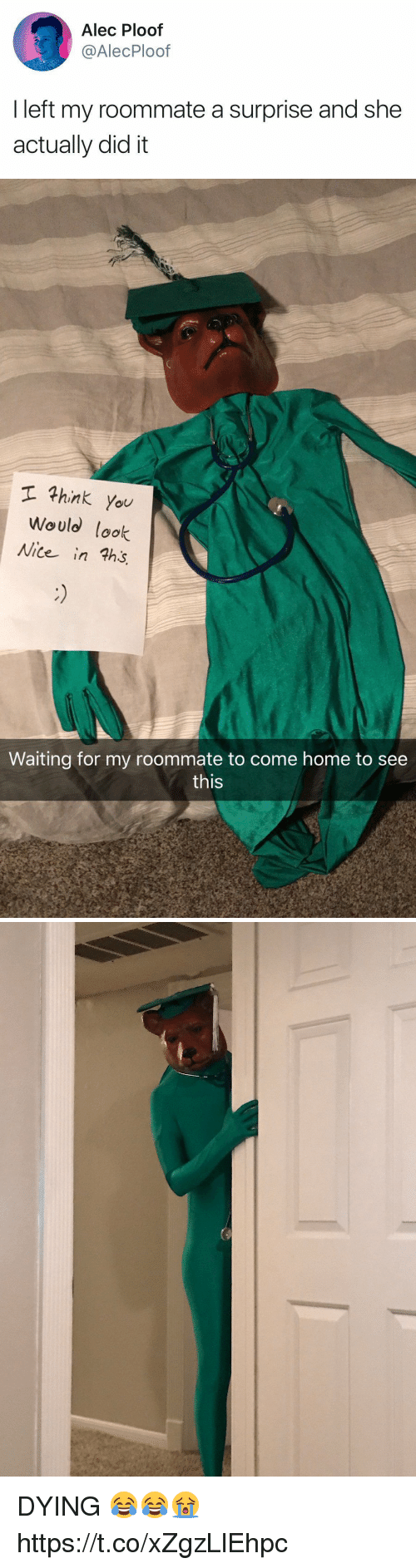 Roommate, Home, and Girl Memes: Alec Ploof  @AlecPloof  I left my roommate a surprise and she  actually did it   hink you  Would look  Nite in ths  Waiting for my roommate to come home to see  this DYING 😂😂😭 https://t.co/xZgzLlEhpc