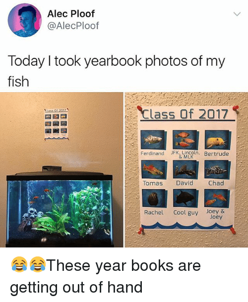 Books, Memes, and Cool: Alec Ploof  @AlecPloof  Today I took yearbook photos of my  fish  Class Of 2017  Ferdinand Jk MLOIn Bertrude  Tomas David  Chad  Rachel Cool guy Joey & 😂😂These year books are getting out of hand