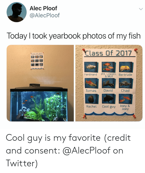 Yearbook: Alec Ploof  @AlecPloof  Today I took yearbook photos of my fish  Class Of 2017  ass Of 2017  Ferdinand JFK, Lincoln, Bertrude  &MLK  Tomas  Chad  David  Cool guy Joey&  Joey  Rachel Cool guy is my favorite (credit and consent: @AlecPloof on Twitter)