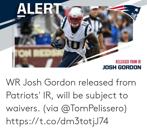 Reds: ALERT  PATRADTS  TON REDS  RELEASED FROM IR  JOSH GORDON WR Josh Gordon released from Patriots' IR, will be subject to waivers. (via @TomPelissero) https://t.co/dm3totjJ74