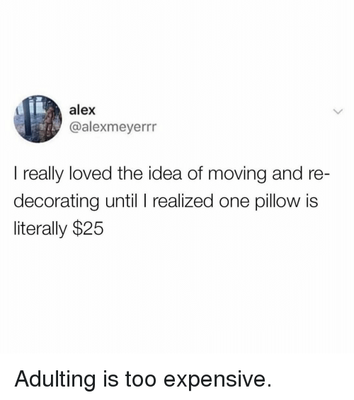 Too Expensive: alex  @alexmeyerrr  I really loved the idea of moving and re  decorating until I realized one pillow is  literally $25 Adulting is too expensive.