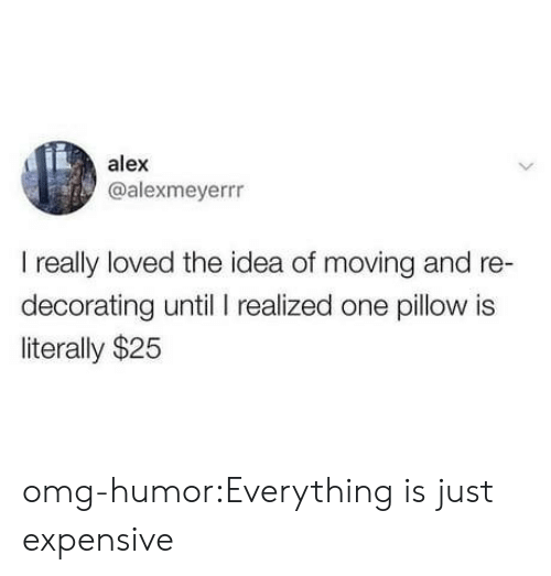 decorating: alex  @alexmeyerrr  I really loved the idea of moving and re-  decorating until I realized one pillow is  literally $25 omg-humor:Everything is just expensive