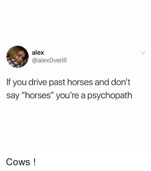 """Horses, Drive, and Psychopath: alex  @alexOverill  If you drive past horses and don't  say """"horses"""" you're a psychopath Cows !"""