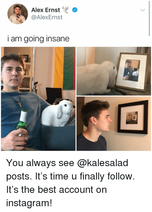 Going Insane: Alex Ernst  @AlexErnst  I am going insane You always see @kalesalad posts. It's time u finally follow. It's the best account on instagram!