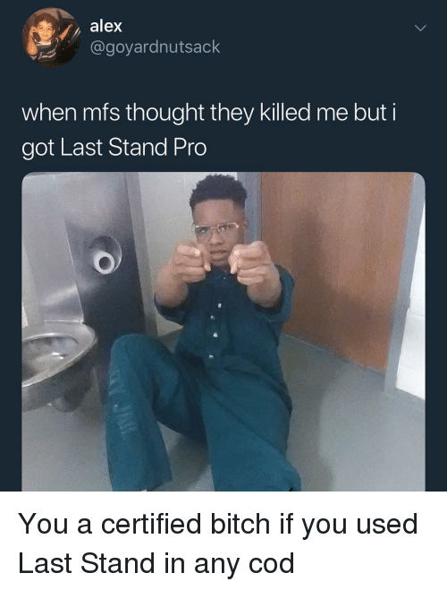 Bitch, Memes, and Pro: alex  @goyardnutsack  when mts thought they Killed me but  got Last Stand Pro You a certified bitch if you used Last Stand in any cod