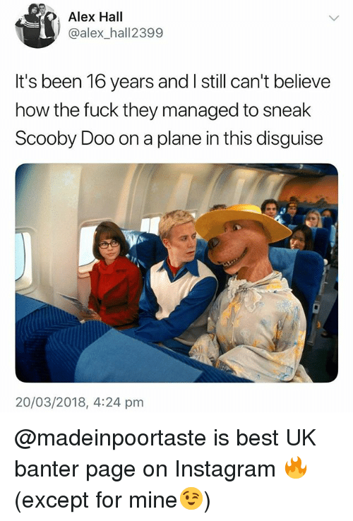 Instagram, Scooby Doo, and Best: Alex Hall  @alex_hall2399  It's been 16 years and I still can't believe  how the fuck they managed to sneak  Scooby Doo on a plane in this disguise  20/03/2018, 4:24 pm @madeinpoortaste is best UK banter page on Instagram 🔥 (except for mine😉)