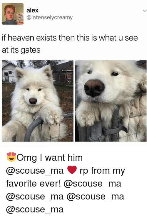 Funny, Mø, and Alex: alex  @intensely creamy  if heaven exists then this is what u see  at its gates 😍Omg I want him @scouse_ma ❤️ rp from my favorite ever! @scouse_ma @scouse_ma @scouse_ma @scouse_ma