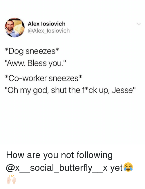 "Aww, Funny, and God: Alex losiovich  @Alex_losiovich  *Dog sneezes*  ""Aww. Bless you.""  *Co-worker sneezes*  ""Oh my god, shut the f*ck up, Jesse"" How are you not following @x__social_butterfly__x yet😂🙌🏻"
