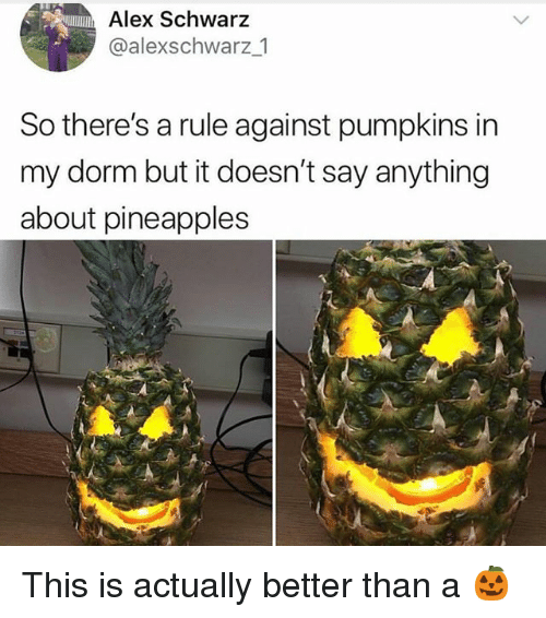 Say Anything..., Trendy, and Alex: Alex Schwarz  @alexschwarz 1  So there's a rule against pumpkins in  my dorm but it doesn't say anything  about pineapples This is actually better than a 🎃