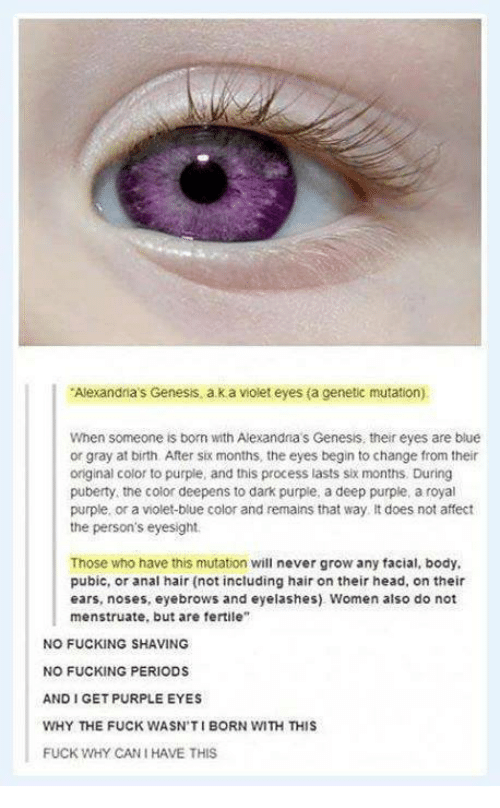 "Fucking, Head, and Memes: Alexandria's Genesis.  a k a violet eyes (a genetic mutation)  When someone is born with Alexandria s Genesis, theireyes are blue  or gray at birth After six months, the eyes begin to change from their  original color to purple, and this process lasts six months. During  puberty, the color deepens to dark purple, a deep purple, a royal  purple, or a violet-blue color and remains that way. It does not affect  the person's eyesight.  Those who have this mutation will never grow any facial, body,  pubic, or anal hair (not including hair on their head, on their  ears, noses, eyebrows and eyelashes) Women also do not  menstruate, but are fertile""  NO FUCKING SHAVING  NO FUCKING PERIODS  AND GET PURPLE EYES  WHY THE FUCK WASN'T I BORN WITH THIS  FUCK WHY CANI HAVE THIS"