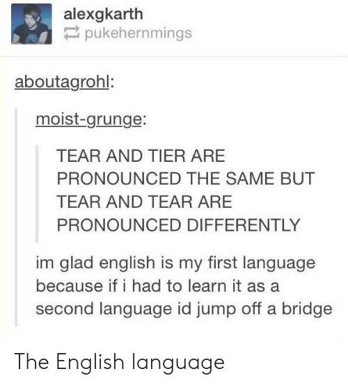 Moist: alexgkarth  pukehernmings  aboutagrohl:  moist-grunge:  TEAR AND TIER ARE  PRONOUNCED THE SAME BUT  TEAR AND TEAR ARE  PRONOUNCED DIFFERENTLY  im glad english is my first language  because if i had to learn it as a  second language id jump off a bridge The English language