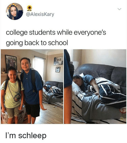 College, Memes, and School: @AlexisKary  college students while everyone's  going back to school  87 I'm schleep