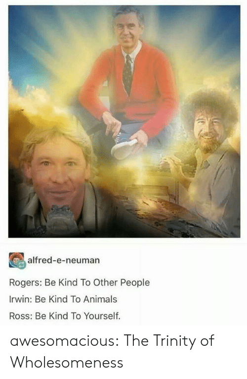 trinity: alfred-e-neuman  Rogers: Be Kind To Other People  Irwin: Be Kind To Animals  Ross: Be Kind To Yourself. awesomacious:  The Trinity of Wholesomeness
