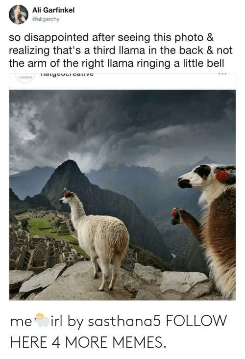 So Disappointed: Ali Garfinkel  @aligarchy  so disappointed after seeing this photo &  realizing that's a third llama in the back & not  the arm of the right llama ringing a little bell  creative me🐑irl by sasthana5 FOLLOW HERE 4 MORE MEMES.