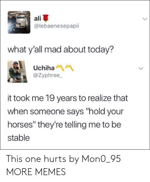 "Uchiha: ali  @lebaenesepapii  what y'all mad about today?  Uchiha  @Zyphree  it took me 19 years to realize that  when someone says ""hold your  horses"" they're telling me to be  stable This one hurts by Mon0_95 MORE MEMES"