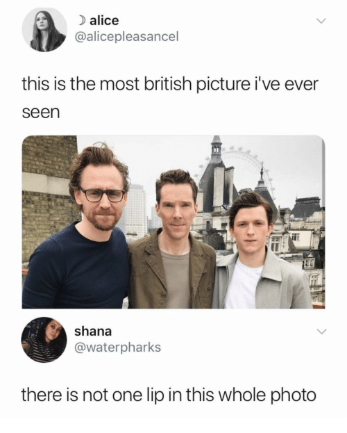 British, Alice, and One: ) alice  @alicepleasancel  this is the most british picture i've ever  seen  shana  @waterpharks  there is not one lip in this whole photo