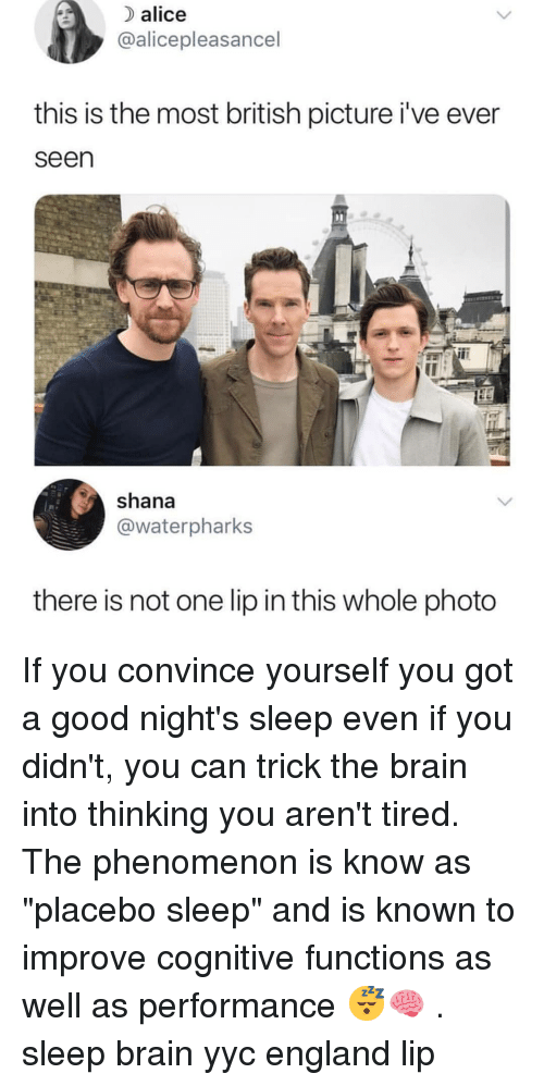 """England, Memes, and Brain: alice  @alicepleasancel  this is the most british picture i've ever  seen  shana  @waterpharks  there is not one lip in this whole photo If you convince yourself you got a good night's sleep even if you didn't, you can trick the brain into thinking you aren't tired. The phenomenon is know as """"placebo sleep"""" and is known to improve cognitive functions as well as performance 😴🧠 . sleep brain yyc england lip"""