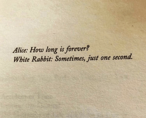 white rabbit: Alice: How long is forever?  White Rabbit: Sometimes, just one second.