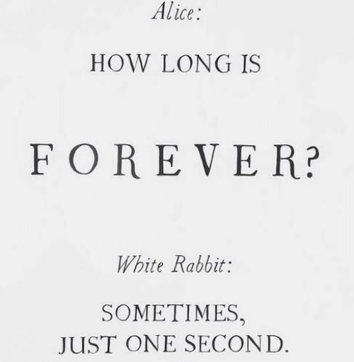 one second: Alice  HOW LONG IS  FOREVER?  White Rabbit:  SOMETIMES,  JUST ONE SECOND.