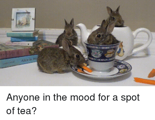 Mood, Tea, and Alice: Alice in W Anyone in the mood for a spot of tea?