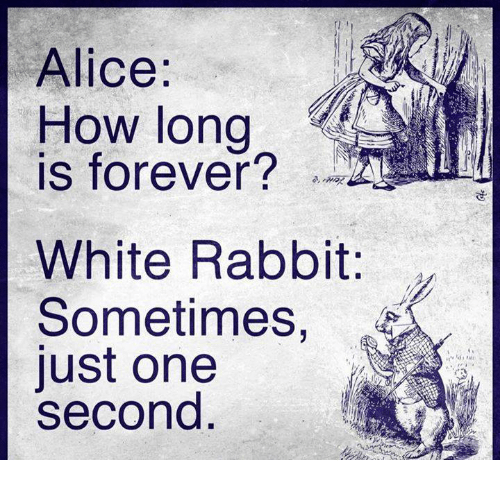 white rabbit: Alice:  loW long  How long  IS forever?  White Rabbit:  Sometimes,  ust one  second