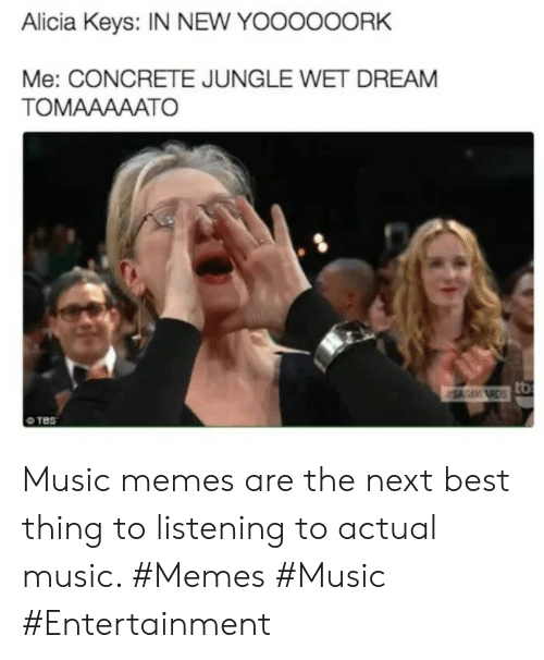 Music Memes: Alicia Keys: IN NEW YOOOOOORK  Me: CONCRETE JUNGLE WET DREAM  TOMAAAAATO  SAGAM RDSO  TBS Music memes are the next best thing to listening to actual music. #Memes #Music #Entertainment