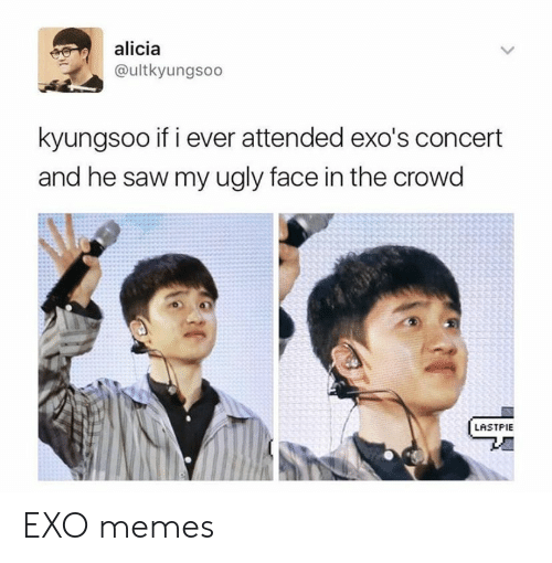 crowd: alicia  @ultkyungsoo  kyungsoo if i ever attended exo's concert  and he saw my ugly face in the crowd  LASTPIE EXO memes