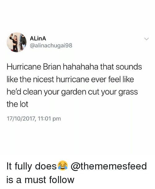 Hurricane, British, and Grass: ALinA  @alinachugai98  Hurricane Brian hahahaha that sounds  like the nicest hurricane ever feel like  he'd clean your garden cut your grass  the lot  17/10/2017, 11:01 pmm It fully does😂 @thememesfeed is a must follow