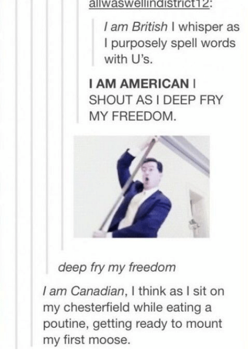 fry: aliwaswellindistrict12:  I am British I whisper as  I purposely spell words  with U's.  I AM AMERICAN  SHOUT AS I DEEP FRY  MY FREEDOM  deep fry my freedom  I am Canadian, I think as I sit on  my chesterfield while eating a  poutine, getting ready to mount  my first moose.