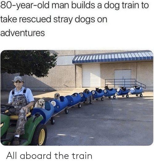 Train: All aboard the train