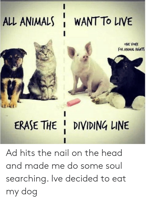 nail: ALL ANIMALS  WANT TO LIVE  ONE VOIKE  FORANMAL RNTS  DT  ERASE THE DIVIDING LINE Ad hits the nail on the head and made me do some soul searching. Ive decided to eat my dog
