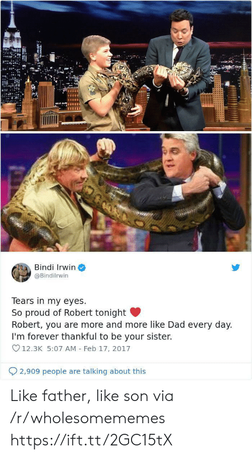 v12: ALL  Bindi Irwin  @Bindilrwin  Tears in my eyes  So proud of Robert tonight  Robert, you are more and more like Dad every day.  I'm forever thankful to be your sister.  V12.3K 5:07 AM Feb 17, 2017  2,909 people are talking about this Like father, like son via /r/wholesomememes https://ift.tt/2GC15tX