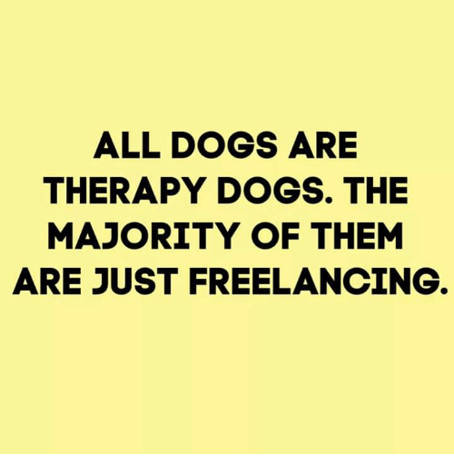 all dogs: ALL DOGS ARE  THERAPY DOGS. THE  MAJORITY OF THEM  ARE JUST FREELANCING