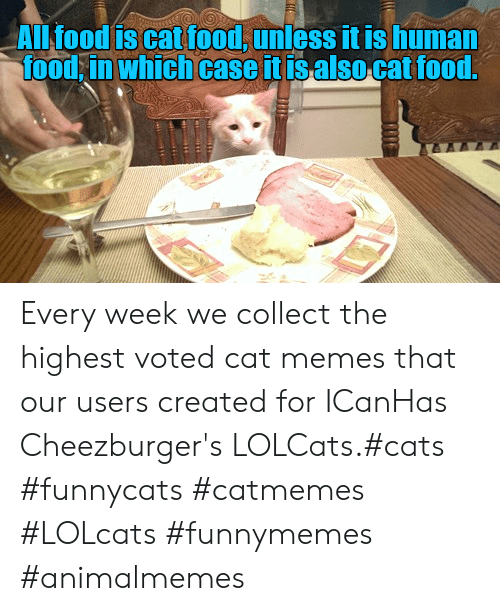 LOLcats: ALl food is cat food, unless it is human  food in which case it isalso cat food.  TE Every week we collect the highest voted cat memes that our users created for ICanHas Cheezburger's LOLCats.#cats #funnycats #catmemes #LOLcats #funnymemes #animalmemes