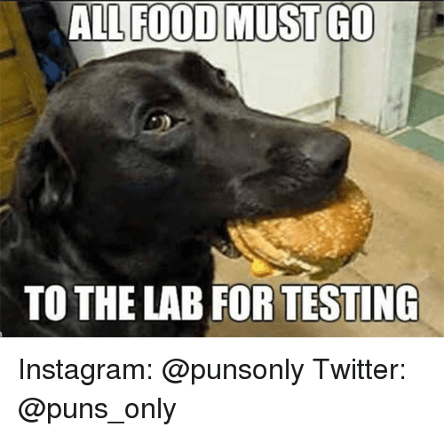Food, Instagram, and Puns: ALL FOOD MUST GO  TO THE LAB FOR TESTING Instagram: @punsonly Twitter: @puns_only
