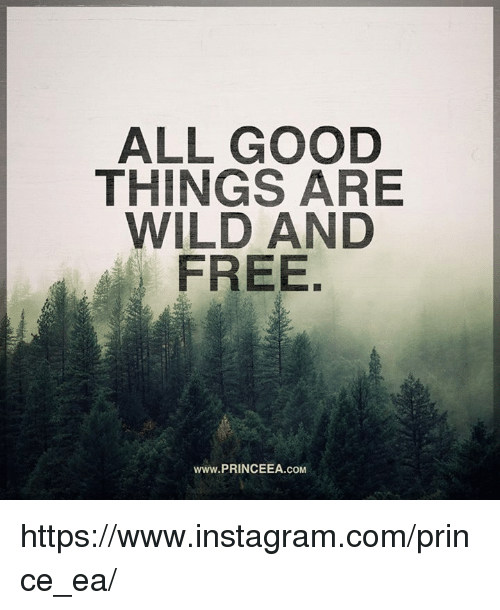 Instagram, Memes, and Prince: ALL GOOD  THINGS ARE  WILD AND  FREE  www.PRINCEEA.coM https://www.instagram.com/prince_ea/