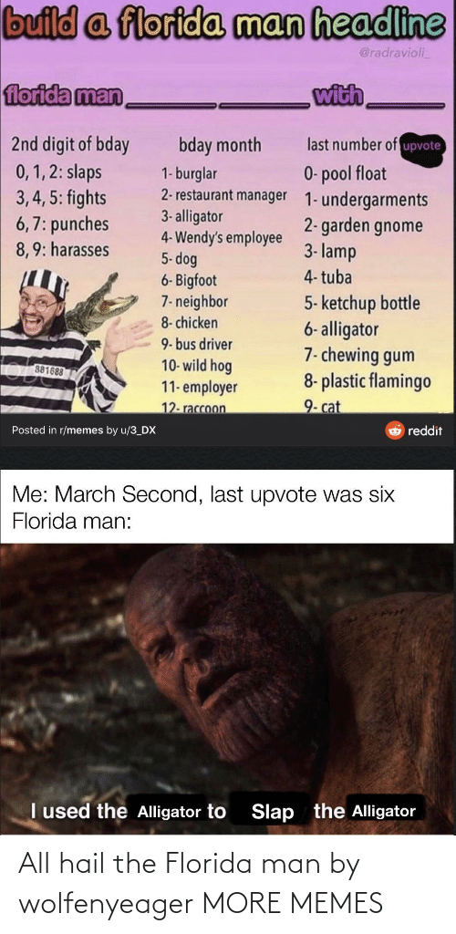 Florida Man: All hail the Florida man by wolfenyeager MORE MEMES