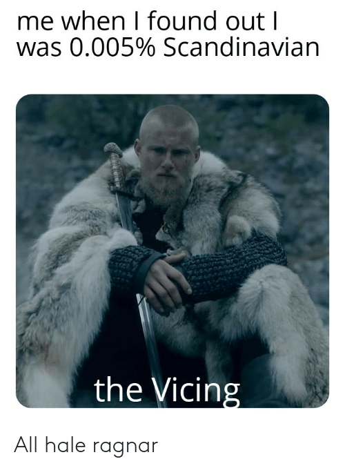 Reddit, All, and Ragnar: All hale ragnar
