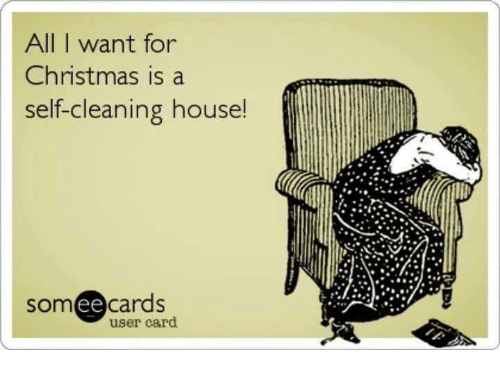 Cleaning House: All I want for  Christmas is a  self-cleaning house!  cards  user card  ee