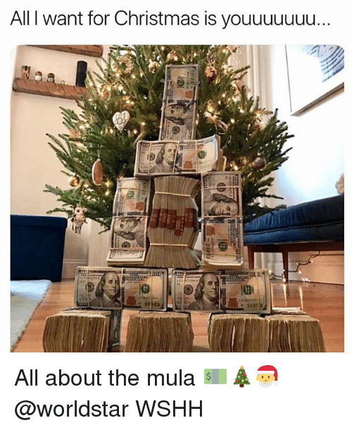mula: All I want for Christmas is youuuuuuu All about the mula 💵🎄🎅 @worldstar WSHH