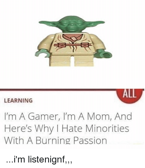 Minorities: ALL  LEARNING  I'm A Gamer, I'm A Mom, And  Here's Why I Hate Minorities  With A Burning Passion ...i'm listenignf,,,