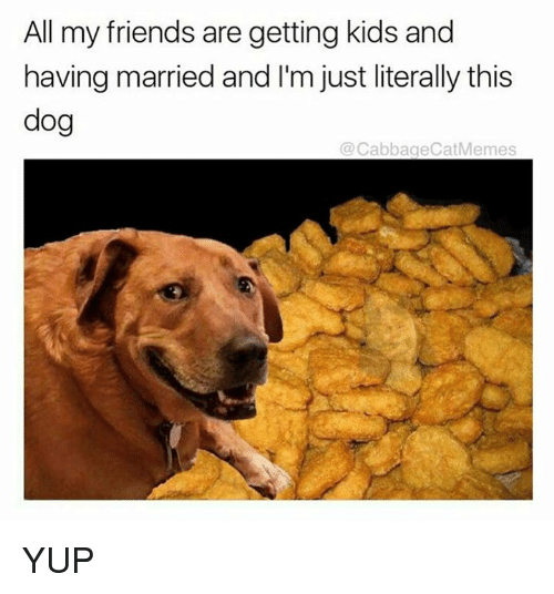 Friends, Memes, and Kids: All my friends are getting kids and  having married and I'm just literally this  dog  @CabbageCatMemes YUP