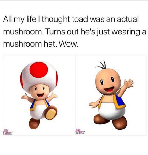 Life, Wow, and Girl Memes: All my life l thought toad was an actual  mushroom. Turns out he's just wearing a  mushroom hat. Wow.  體LY  EILY